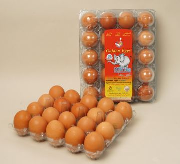 EXTRA LARGE EGGS  - PACK OF 20-20-Brown-Soft-REGULAR