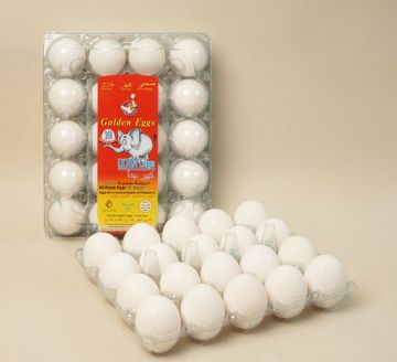 EXTRA LARGE EGGS  - PACK OF 20