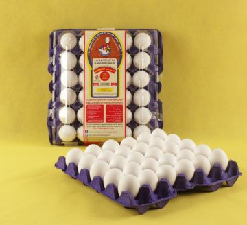 LARGE EGGS - PACK OF 30